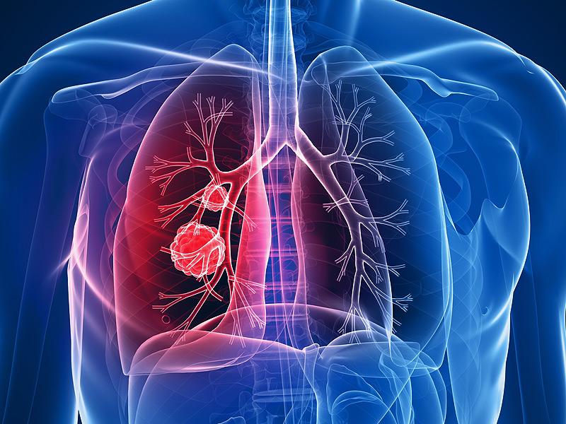 Bulletin of Medical Sciences – Number 3, Volume 44, 2013